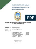 Inf. Monitoreo de Miraflores ...