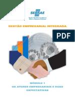 Gei PDF Modulo1 (1)