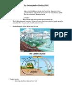 Biology EOC Key Concepts