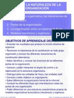 2 TEMA 1 LA NATURALEZA DE LA ORGANIZACIÓN.ppt
