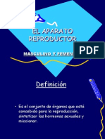 elaparatoreproductor-120623143822-phpapp01