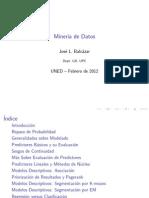 jlb-MineriaDatos.pdf