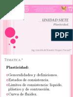 CAP. 7 Plasticidad