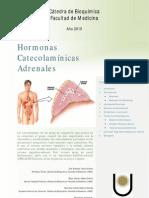 Cate Cola Minas