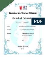 Informe SFA