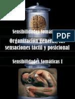 Capitulo 47 Sensasiones Somaticas I