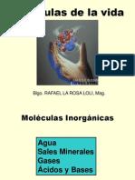 Agua y Biomoleculas