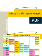Industry & Market Place Analysis