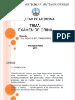 PRESENTACION ORINA-UPAO 2013