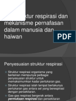 7.2 Struktur Respirasi Dan Mekanisme Pernafasan Dalam Manusia Dan Haiwan