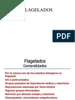 03_Flagelados