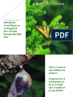 The story of the butterfly.ppt
