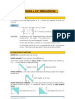 Matrices e Determinantes _Apuntes Mat2