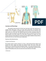 Anatomy(Ortho) (1)
