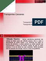 Transp_celular Membrana Plasmatica