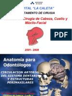 (Teoria) Circulacion Arterial Del Sistema Dentario y Estructuras Perimaxilares