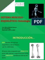 CLASE 2, II UNIDAD. SIST. M-E, Osteología, Cráneo