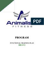 Functional Training Plan B