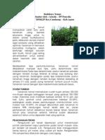Budidaya Tomat.pdf