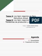 Tema 04 y 05 Los Agronegocios en el Perú - Estructura Actual