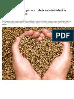 5 Tipuri de Seminte Pe Care Trebuie Sa Le Introduci in Alimentatia Zilnica