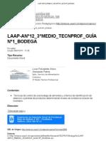 LAAP-ANº12_3ºMEDIO_TECNPROF_GUÍA Nº1_BODEGA