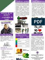 Cartelon Scout