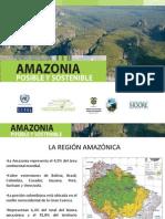 Amazonas posible y sostenible