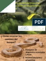 Estrategia de sostenibilidad financiera de la conservación en el Amazonas