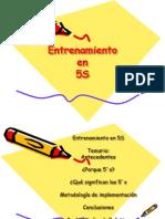 Entrenamiento 5`s.ppt