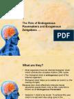 AQA A  Psychology Unit     Bio rhythms and Sleep