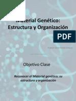 Material Genético NM2