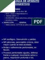 13 - Abdomen IPPA (Dr Tello)