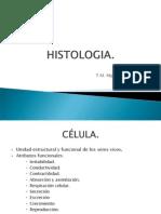 HISTOLOGIA célula