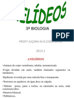 Anelideos.ppt OK.2013