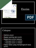3. ENZIM