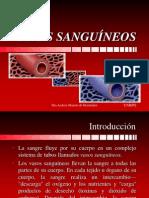 Vasos Sanguíneos_Clases