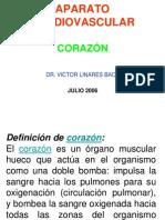 Clase Cardiaco Histologia