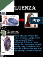 Influenza Flu