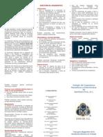 Guia Para Diagnostico de La Ie-2010