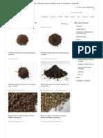Substrato e materiale drenante _ Prodotti per tetti verdi _ Roof Garden _ climagrün®
