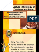Lecture Cartilage and Bone 2009