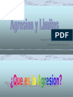 Manejo de La Agresividad Sep 2005