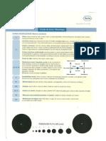 Guia de Bolso Neurologia PDF