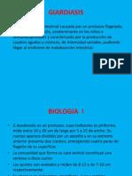 2.5. Flagelados (Giardiasis, Dientamoeba Fragilis y Tricomon