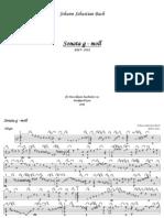 D-Burkhard Korn - Bach BWV 1xxx Baroque Lute