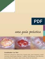 GUIA PRACTICA HERIDAS CRONICAS-CUIDADOS.pdf