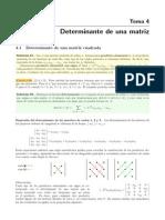 04_Determinante.pdf