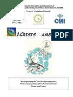 Libro Crisis Ambiental PNUMA-OnU (1)