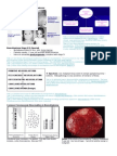 Cancer Epidemiology and Pediatric Neoplasia p11-14